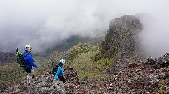 thefitlife trekking pole
