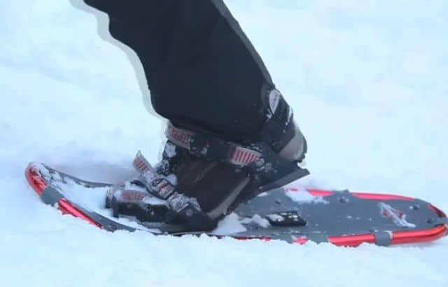 snowshoeing near me