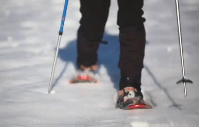 snowshoeing pants