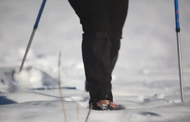 what is snowshoeing