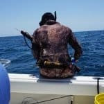 How to Spear Fish - A Complete Beginners Guide on Spearfishing