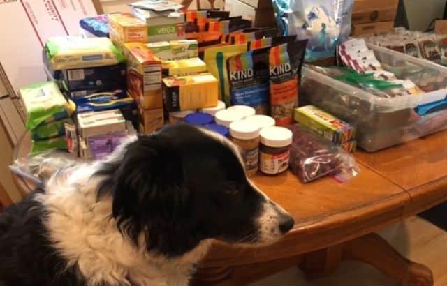 backpacking dog food