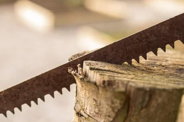 Types of Backpacking Saws