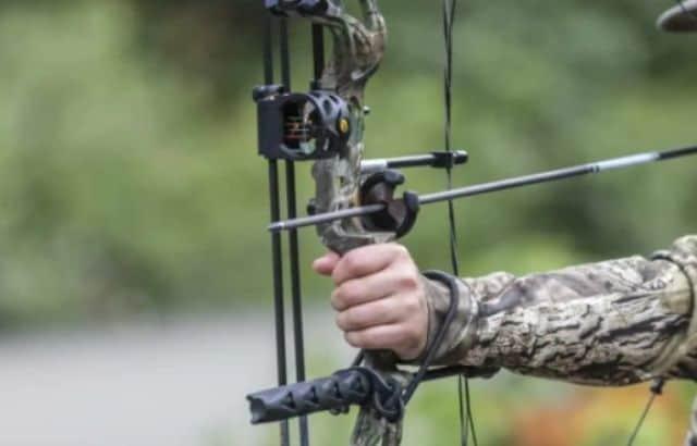arrow rest compound bow