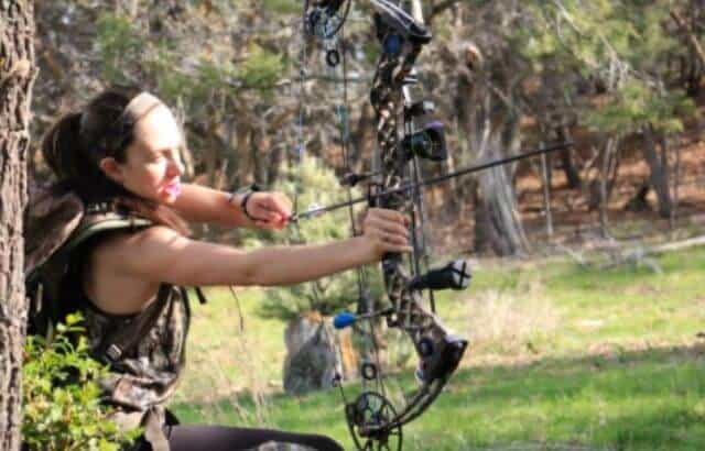 best arrow rest for hoyt bows