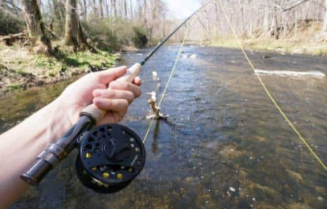 fishing line weight guide