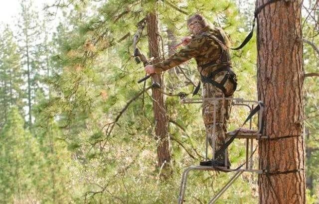 best ladders stands for bow hunting
