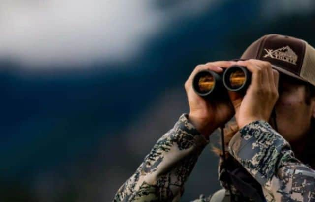 polaris optics wideviews 8x42 hd professional bird watching binoculars